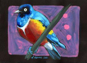 bird-lucasanna
