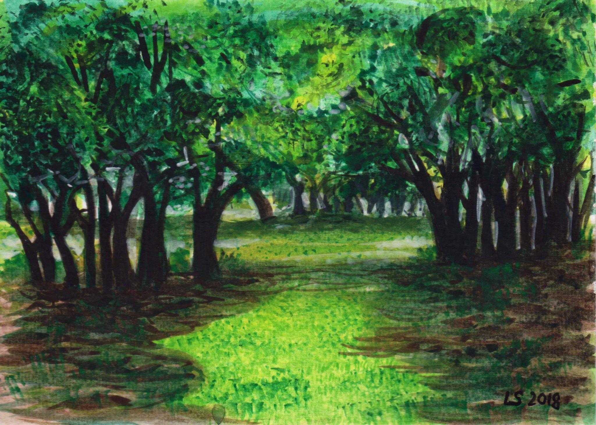 paesaggio-sa-fraigada