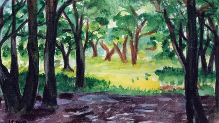 Paesaggio con alberi di Luca Sanna
